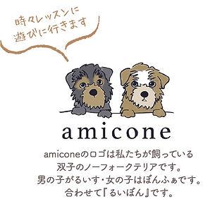 amicone_logo_ruibon.jpg