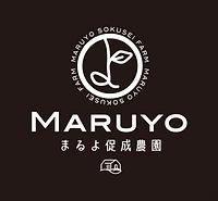 MARUYO_LOGO_03.png