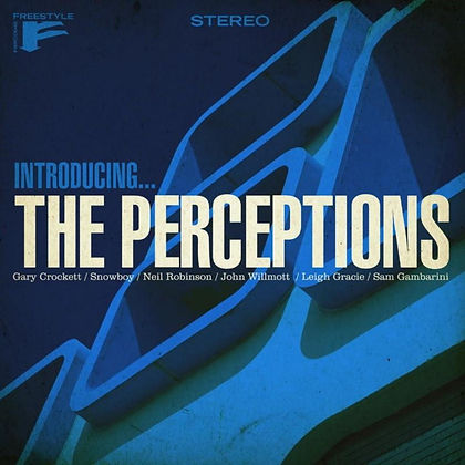 Introducing... The Perceptions