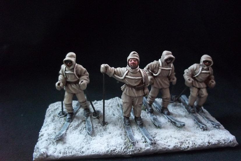 AA 1 Arctic Skiers