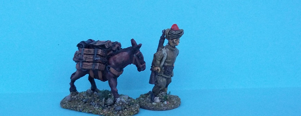BC 23 Indian Mule Team A