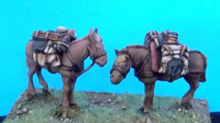PM2 Pack mule set 2