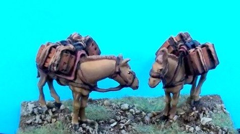PM1 Pack mule set 1