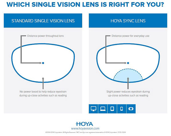 Hoya Sync.jpg