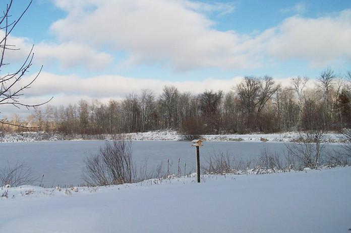 1251646-winter4.w1024.jpg
