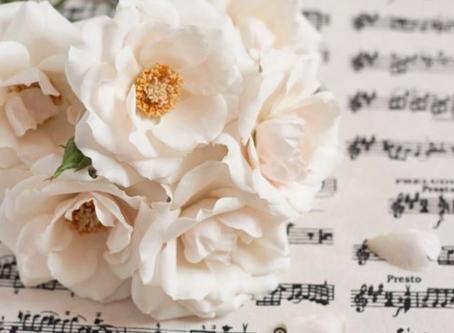 White Flower Story