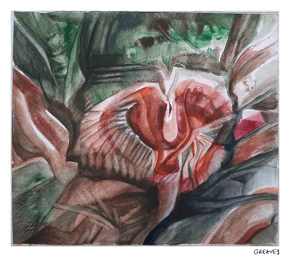 Watercolour painting of mushroom