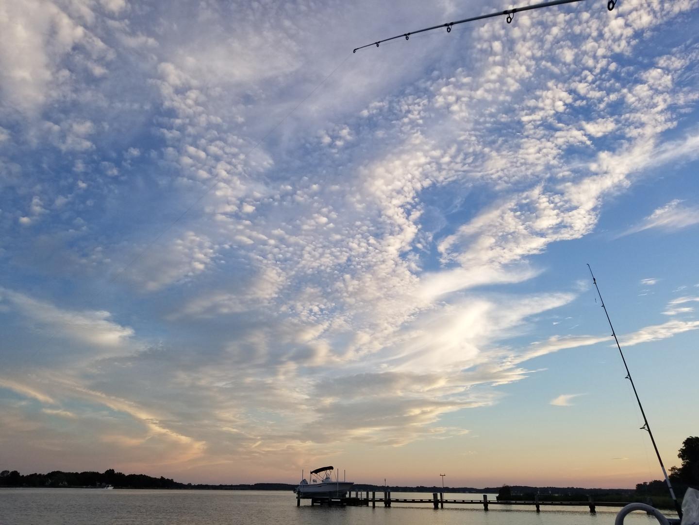 Docks, Fish & Clouds