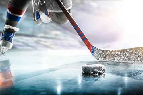 WinPicks 2021 Pro Hockey Analyst