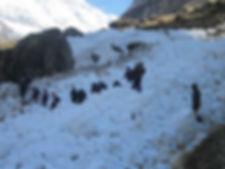Pindari-Glacier1.jpg