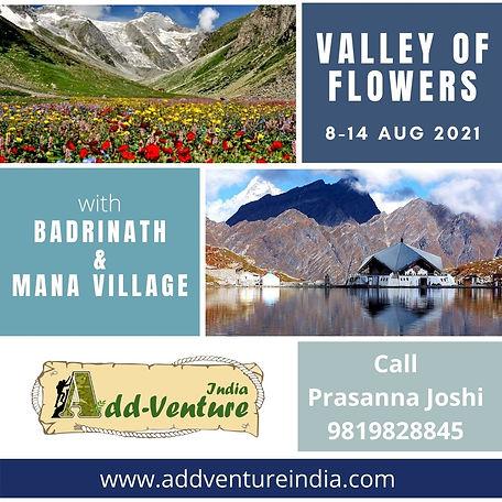 Valley of Flowers.jpg