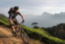 Kerala-Biking2.JPG