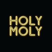 Holy Moly Macaroni shopfitting