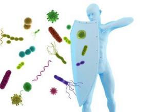 Lutter contre les maladies saisonnières : stimuler son système immunitaire