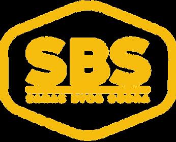 NOVE-LOGO-SBS.png