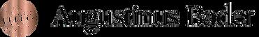 augustinus_bader_sg_transparent_logo_2_1