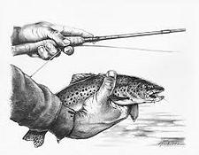 fishandrodinhand.png