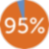 pie-chart 95.png
