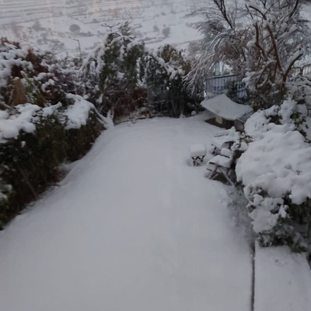 Israel in the Snow!