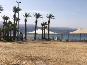 What's the Process? Green Islands Eilat and Dead Sea open, as well as Zoos!