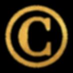SynergyHouses_Logo_VC-02.png