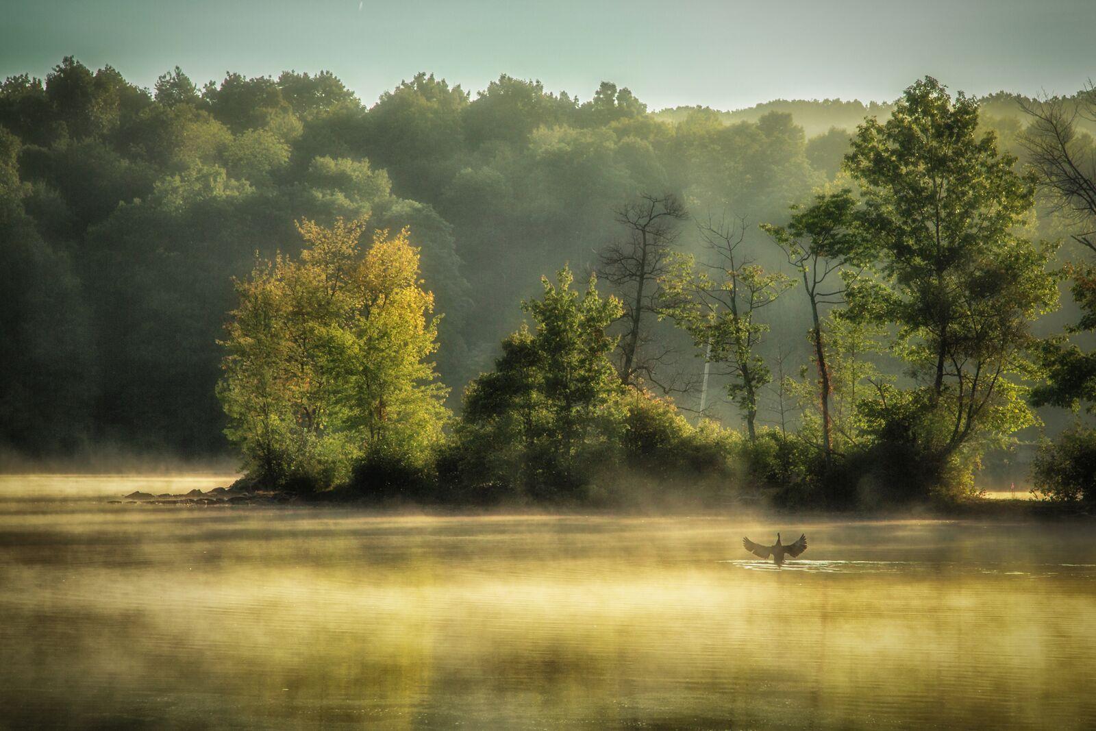Serenading The Lake