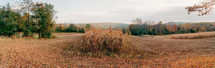Shenandoah Field