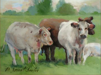 Charolais, Brown Cow and Sheep