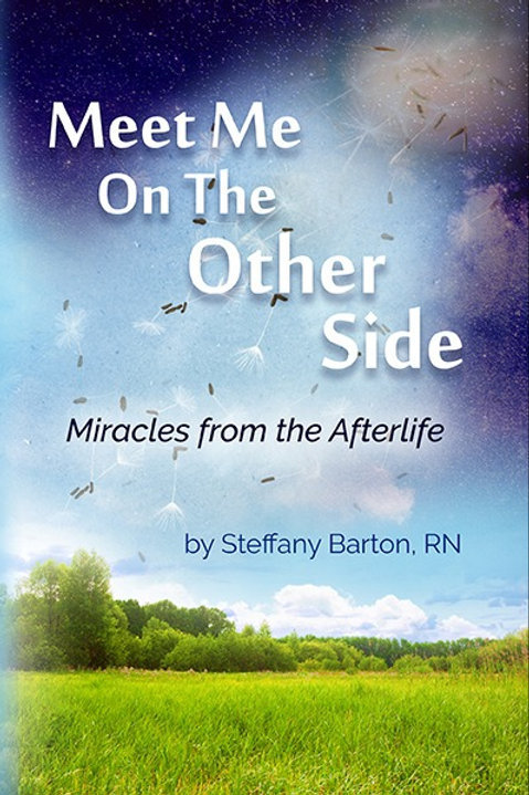 Meet Me on the Other Side Book