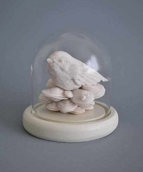 Mussel Nest.jpg