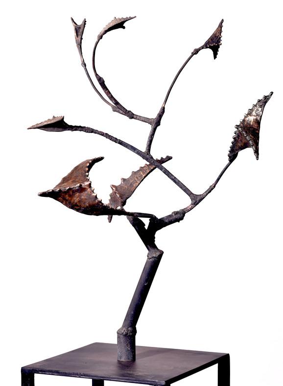 Star Tree, 2017, Bronze, 75 x 65 x 55 cm