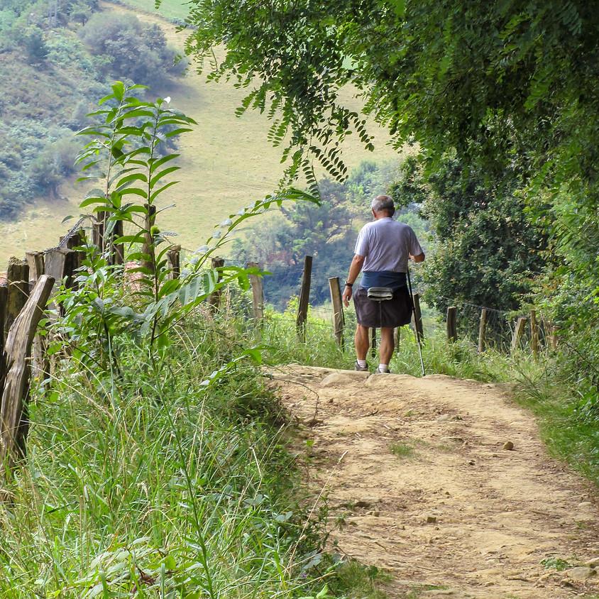 6 dagen te voet over de Camino del Norte