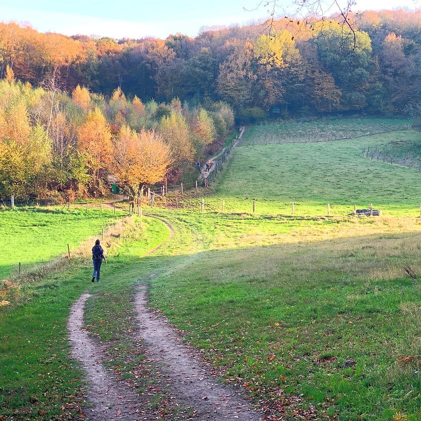 Wandelreis Zuid-Limburg: Krijtlandpad