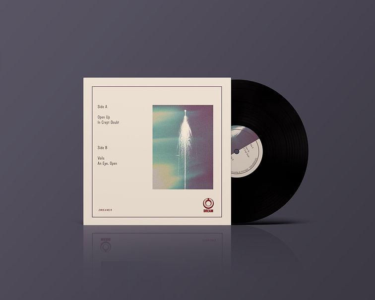 Vinyl Record Mockup1.jpg
