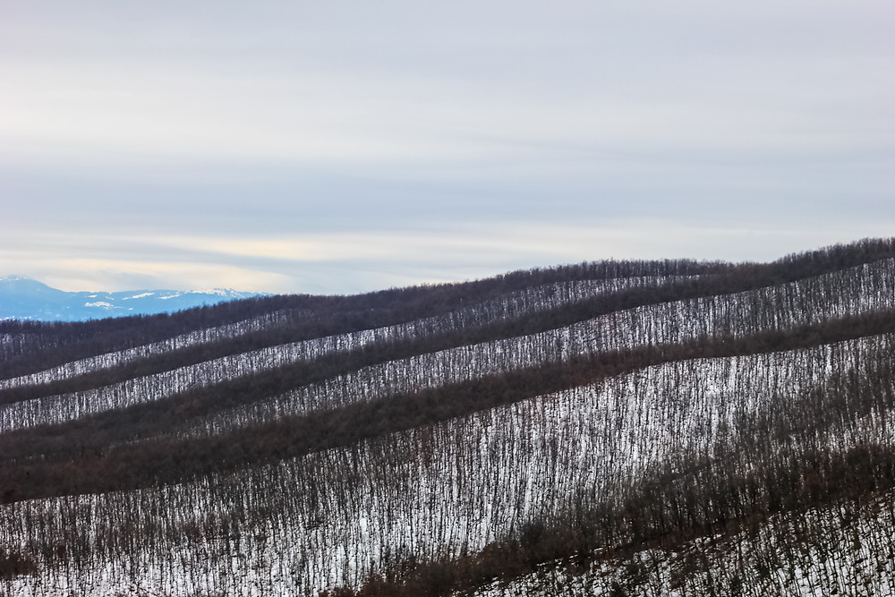 Florina -view from the road-Jan. 2019