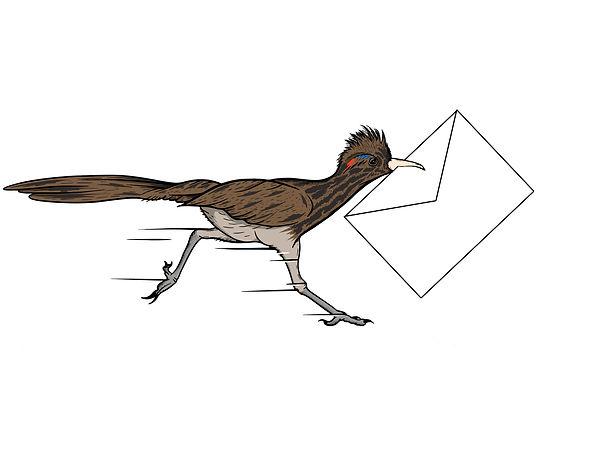 Mail Bird.jpg
