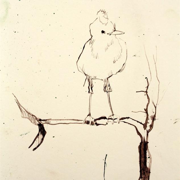 Drawing 2012