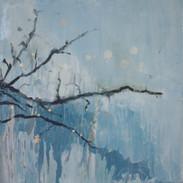 Twigs 2010.