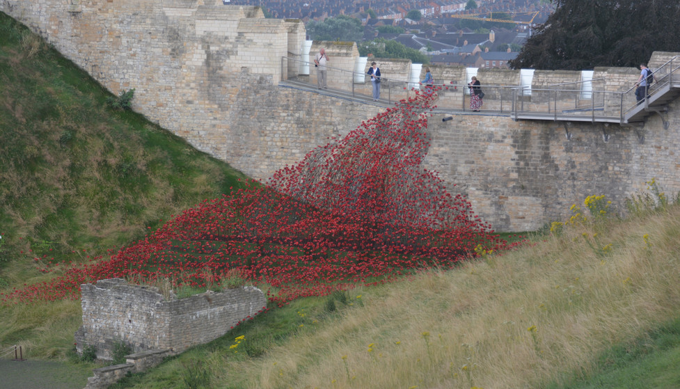 Poppies in Lincoln Castle