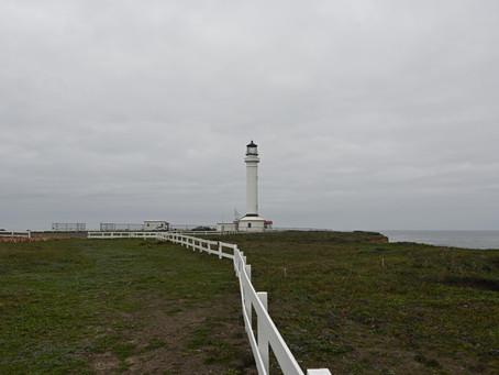 A Coastal Drive Up Highway 1