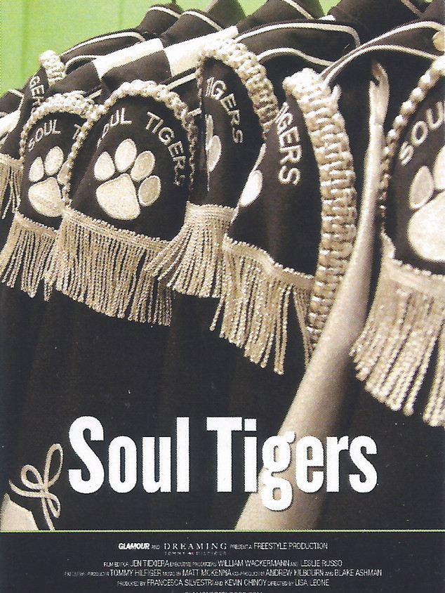 SOUL TIGERS 2008
