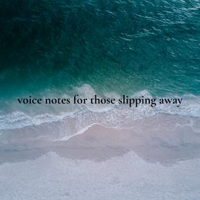 voice notes for those slipping away - saachi gupta