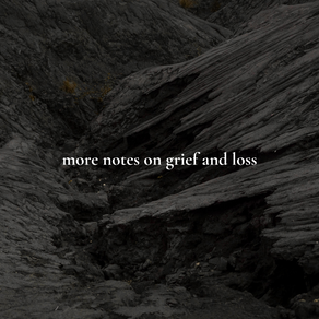 more notes on grief and loss - saachi gupta