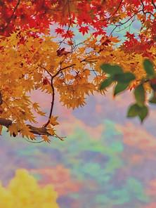 Songnisan-01.jpg