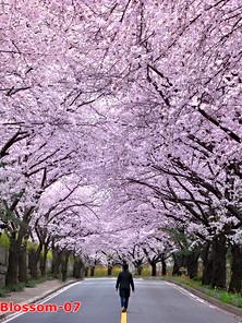 Spring-07.jpg