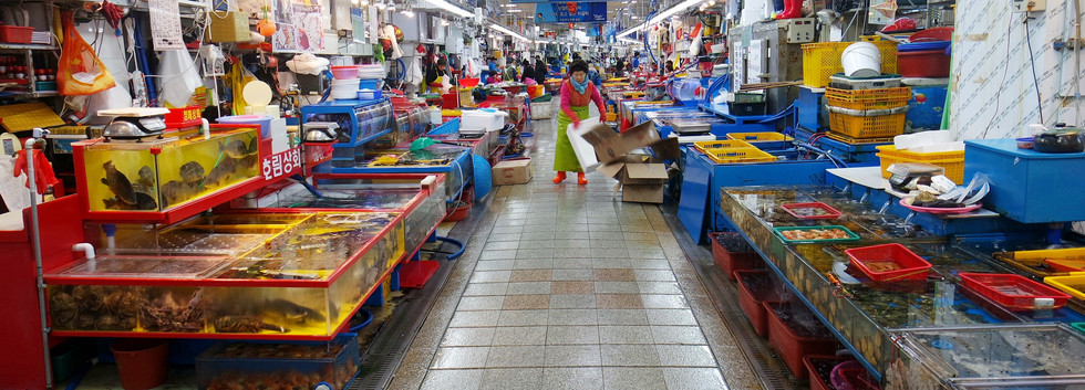 Busan Jagalchi Market-01.jpg