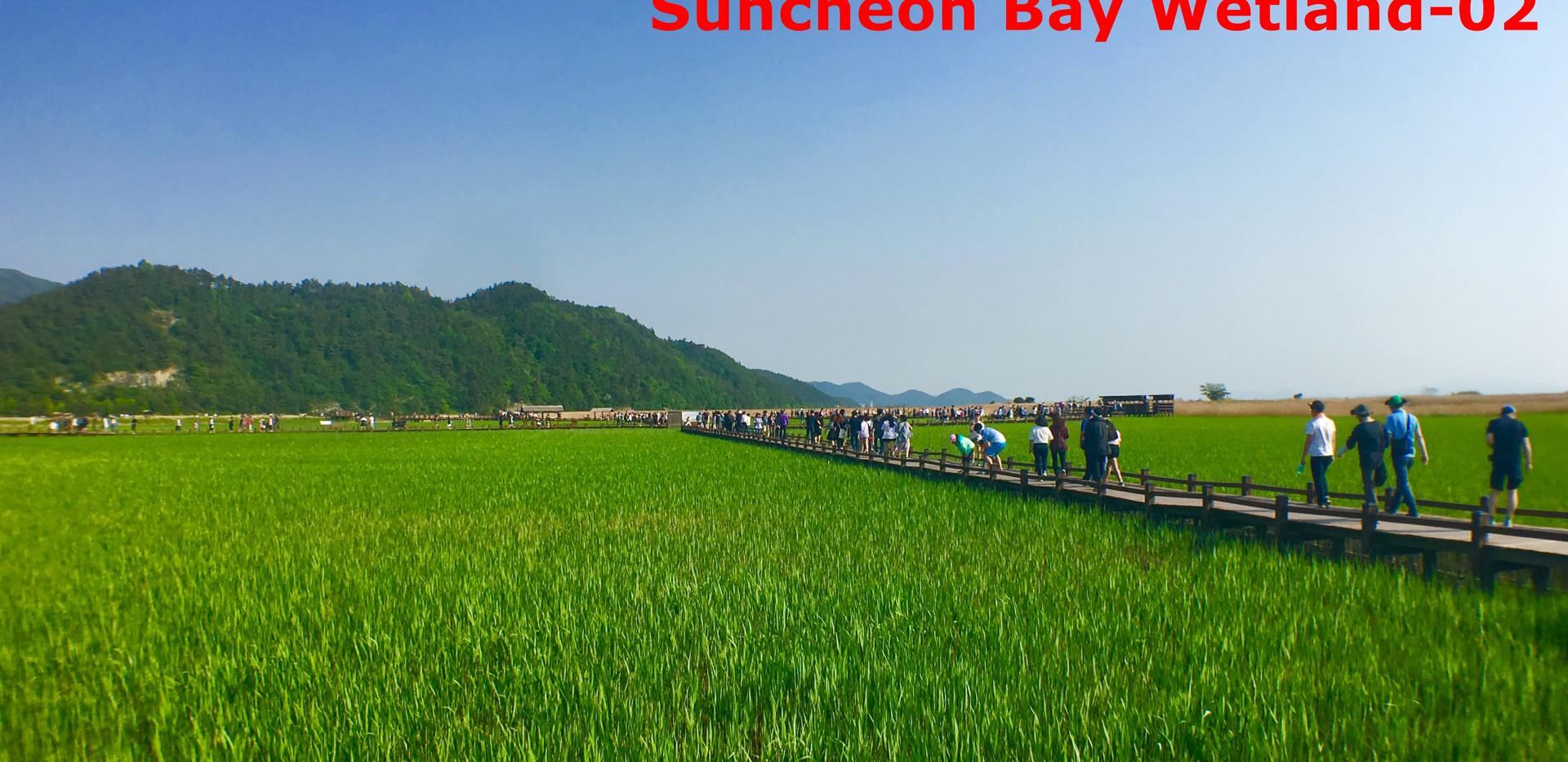 Suncheon Suncheonman Bay-02.jpg