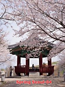 Spring-04.jpg