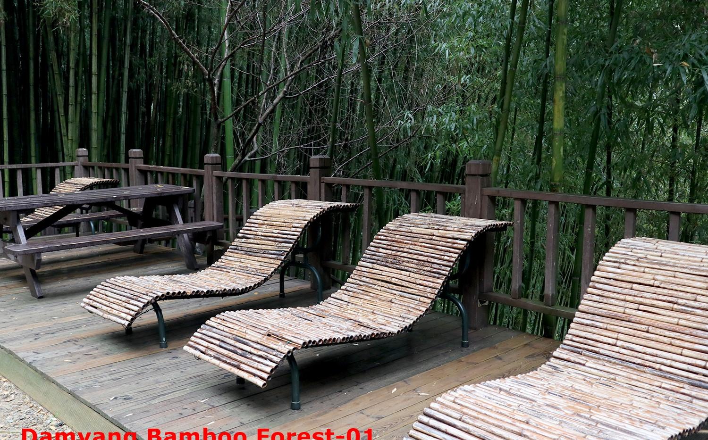 Damyang Bamboo Forest-01.jpg