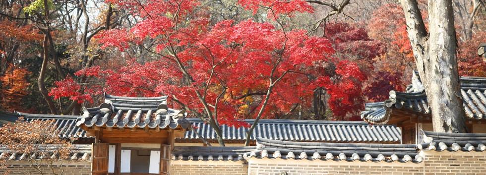 Changdeokgung Palace-01.jpg